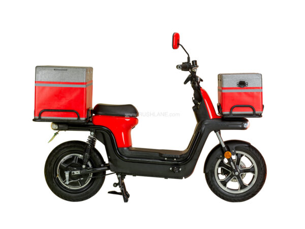 EVTRIC Electric Scooter Imported From China
